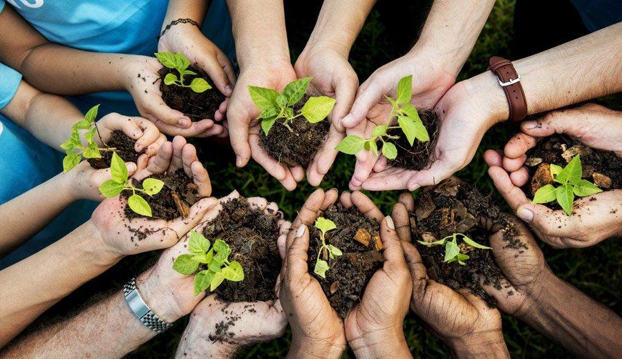 blog_nurturing_img